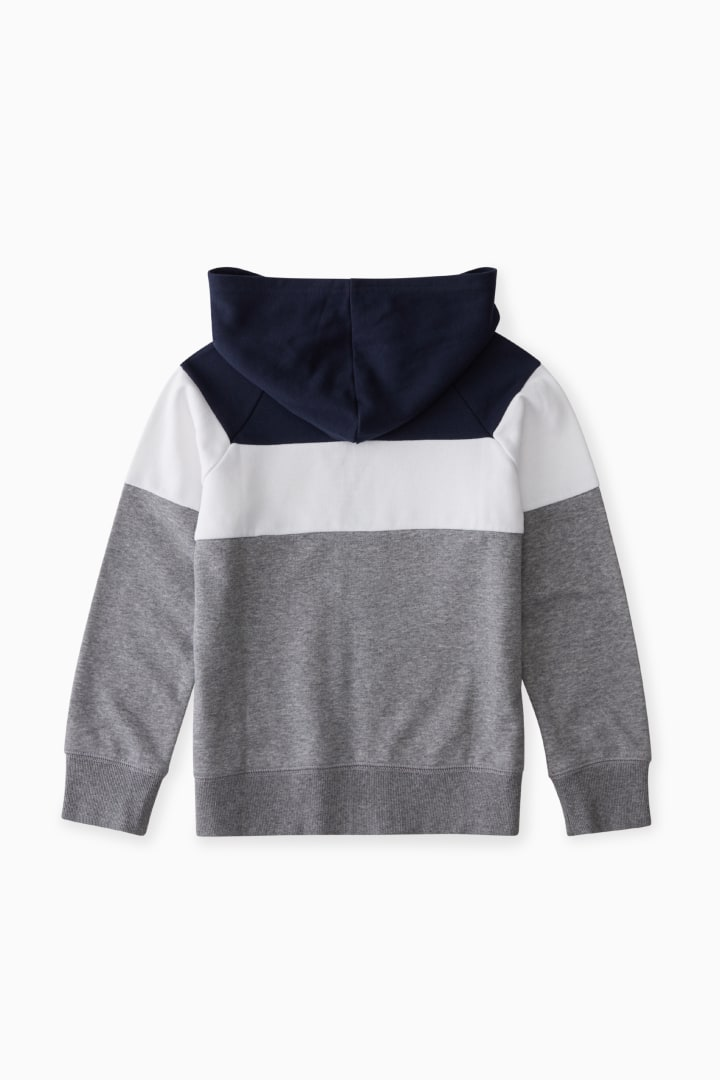 Colorblock Full-Zip Sweatshirt back