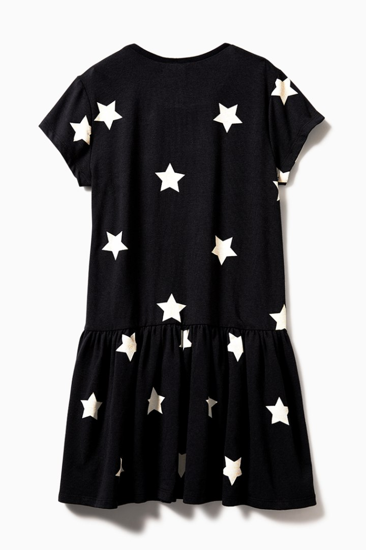 Star Drop Waist Dress back