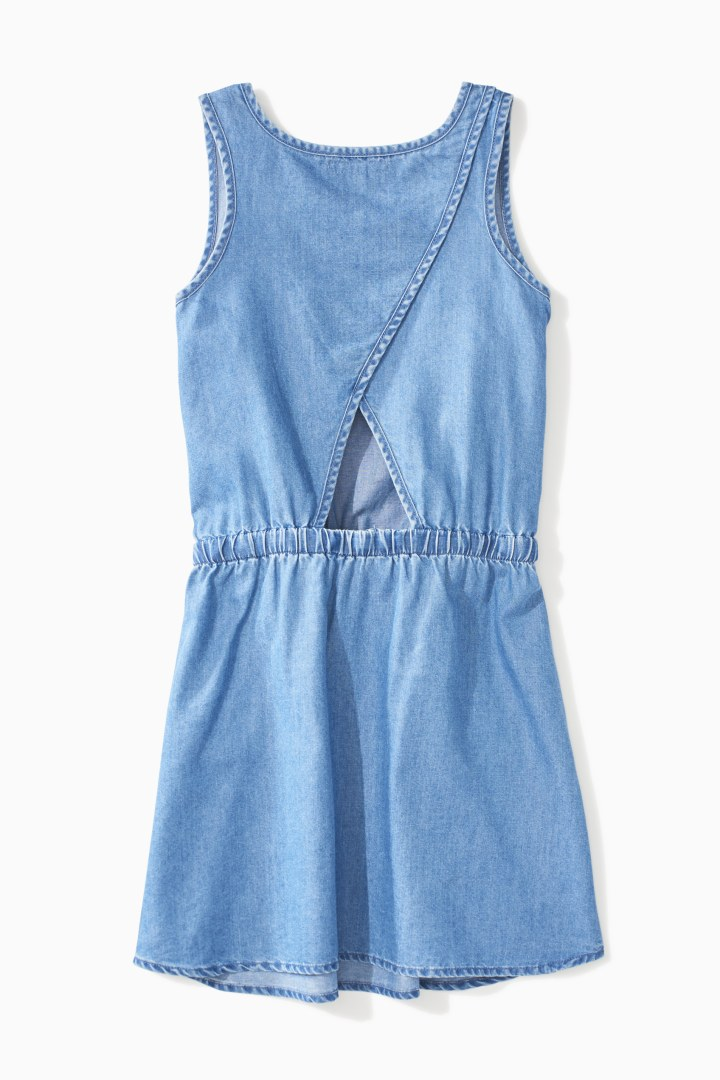 Chambray Dress back